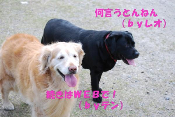 2010.04.11②-17
