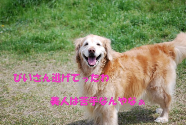2010.04.11②-16
