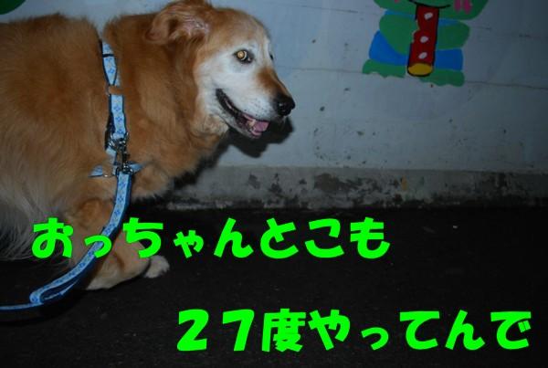 2010.05.21-2