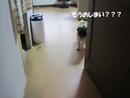 IMG_07020501.jpg