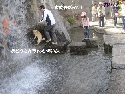 IMG_08400504.jpg