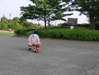 ひの公園1