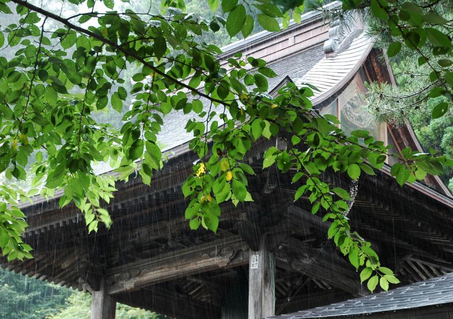 2011 07 01 山寺 雨宿りs
