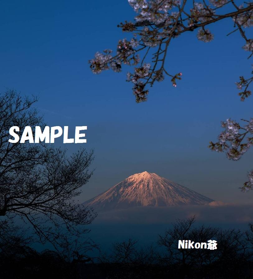 2013 03 23 R 興徳寺  D3X (70)