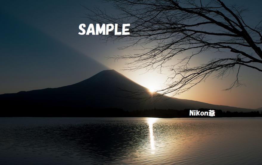 2013 03 23 24 R 田貫湖 D3X (24)