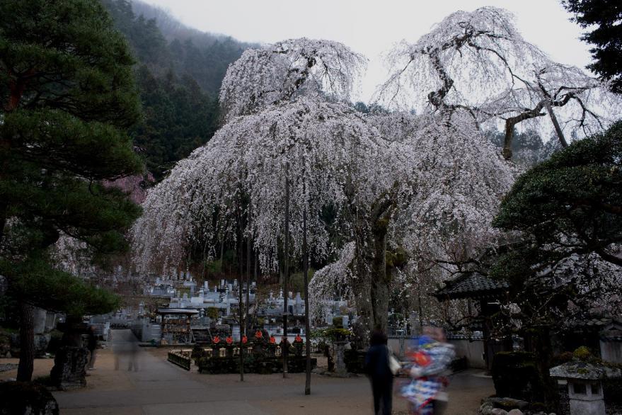 2013 03 31 青雲寺s1
