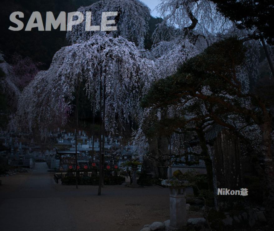2013 03 31 青雲寺7s