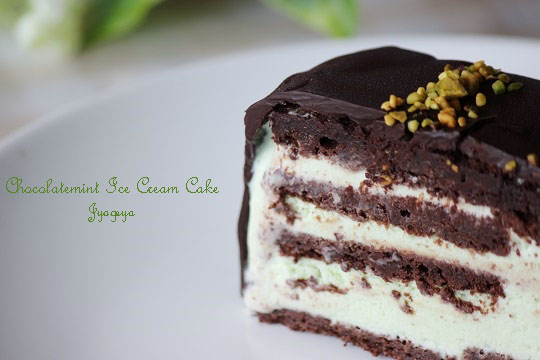 chocomint ice cake-13