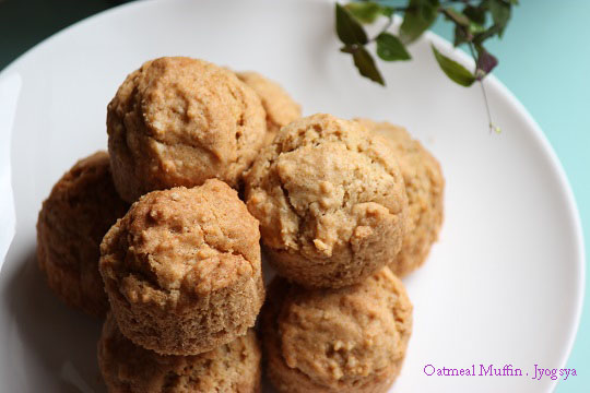 oatmeal muffin-10