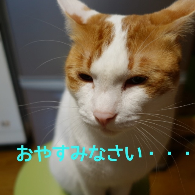 201410240104305fa.jpg