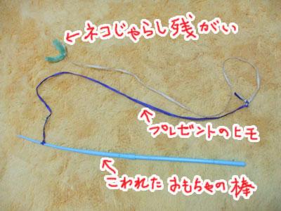 20100522b.jpg
