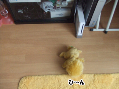 20110709a.jpg