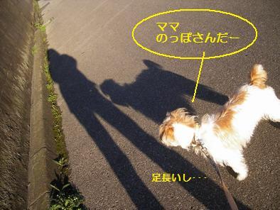 のっぽさんだー!