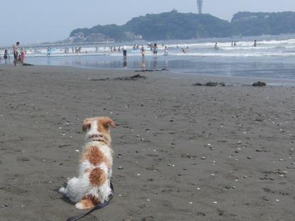 2010-07-31 海風が気持ちいいわねー