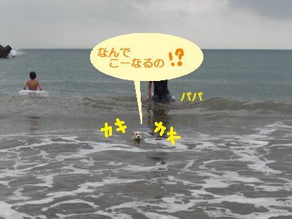 河津海水浴場