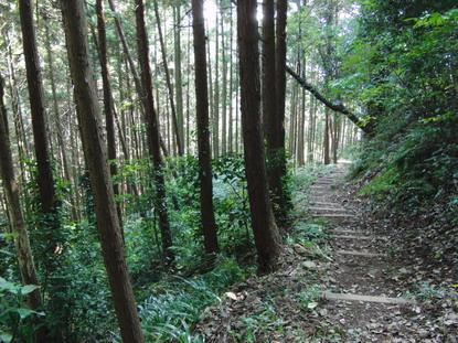 白山神社へ向かう山道