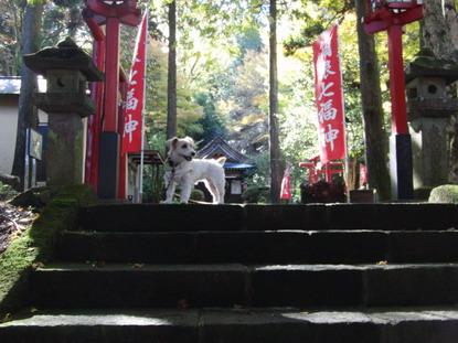 駒形神社で