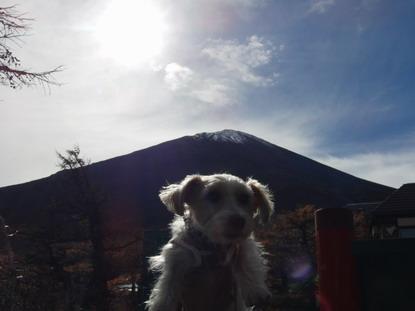 富士山だよー。