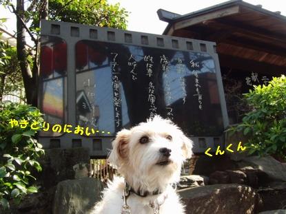 いい匂いがする・・・山田監督の石碑前で
