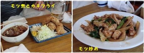 モツ煮とカキフライ&モツ炒め