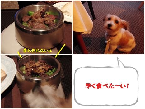 2011-08-12 みみごはん~