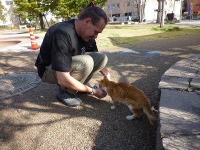 kitty_convert_20110502170215[1]