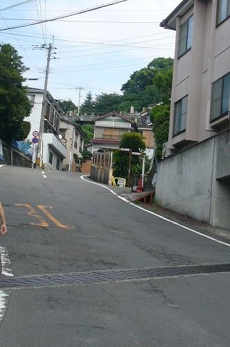 kokusaibochi.jpg