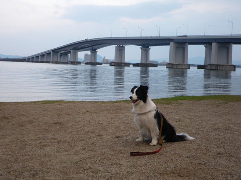琵琶湖大橋の近くの道の駅