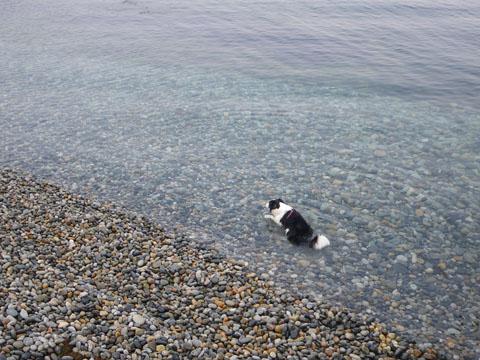 海は冷たいな