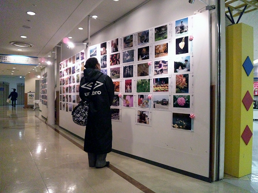 写真展1-20130113