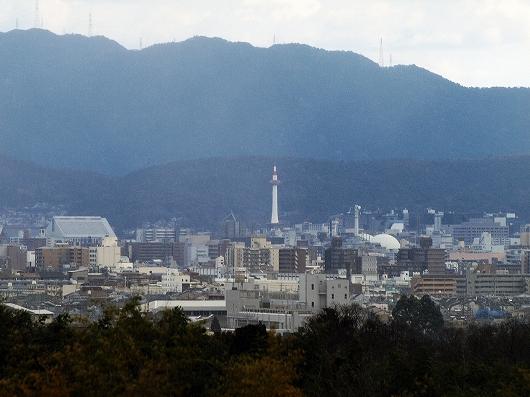 常寂光寺・裏山より20121231