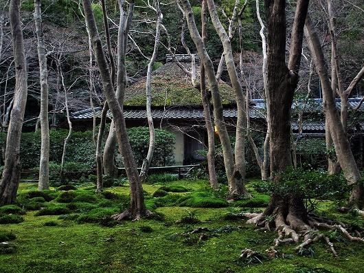 祇王寺・本堂1-20121231