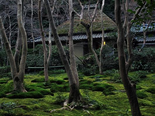 祇王寺・本堂2-20121231