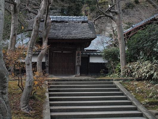 円覚寺・居士林20130103