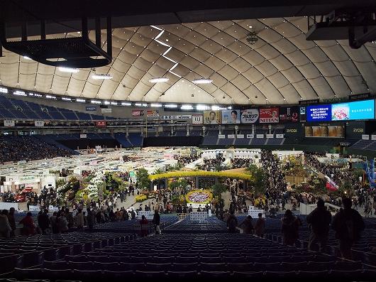 世界らん展会場1-20130216