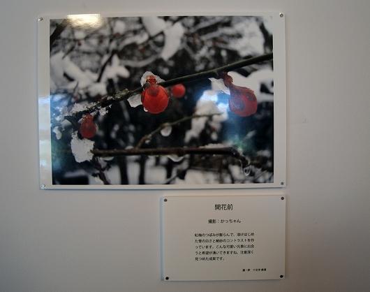 展示作品20130223
