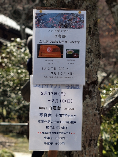 東慶寺フォトギャラリー写真展案内20130223