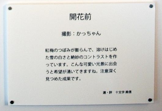 評拡大20130223
