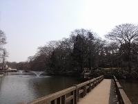 橋と噴水 (200x150)
