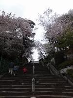 honmonji.jpg