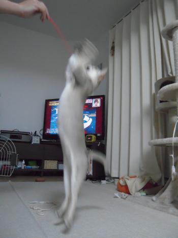 20111013-2.jpg