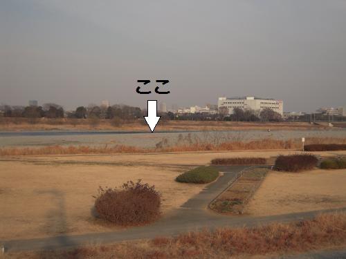 20120118-5.jpg