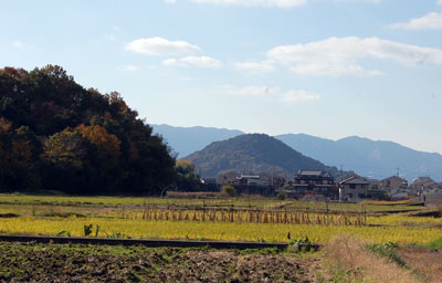 14.11.27畝傍山