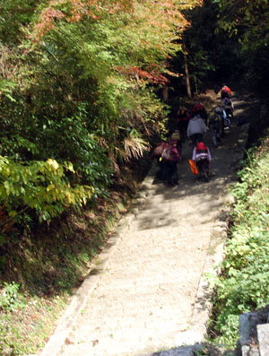 14.11.20石段