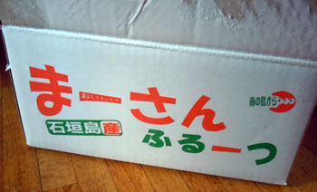 14.11石垣島