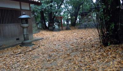 14.12.4哭沢の森2