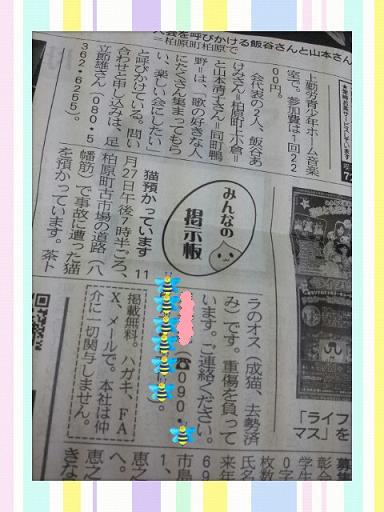 チャイ新聞