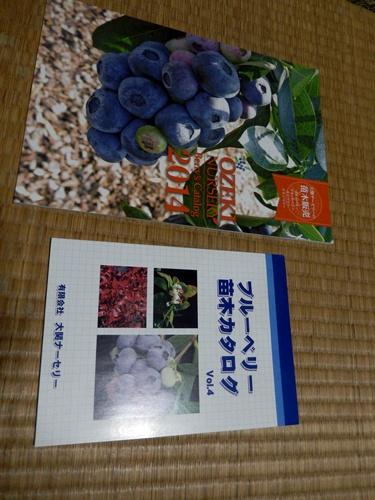 2014.9.7 果樹のカタログ 001
