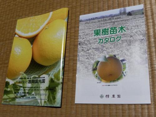 2014.9.7 果樹のカタログ 002