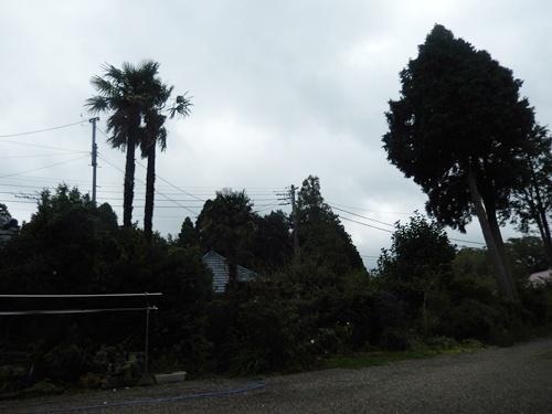 2014.9.25 温帯低気圧 008 (1)